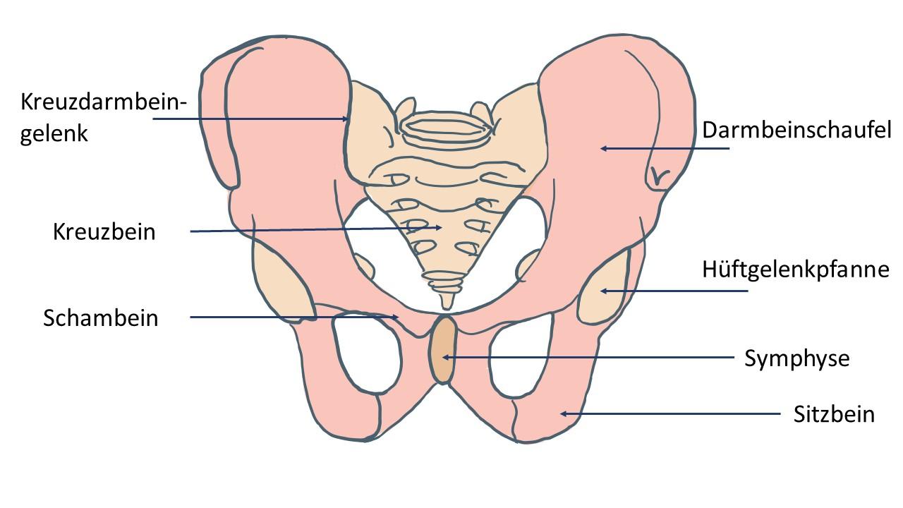 Ertasten schambein Schambeinentzündung: Vielfätige